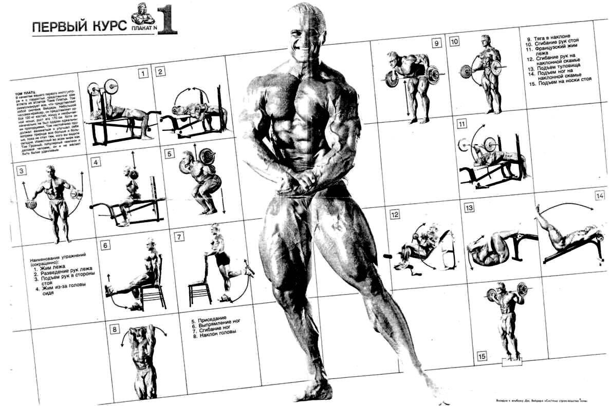 Как накачать мышцы без жира?