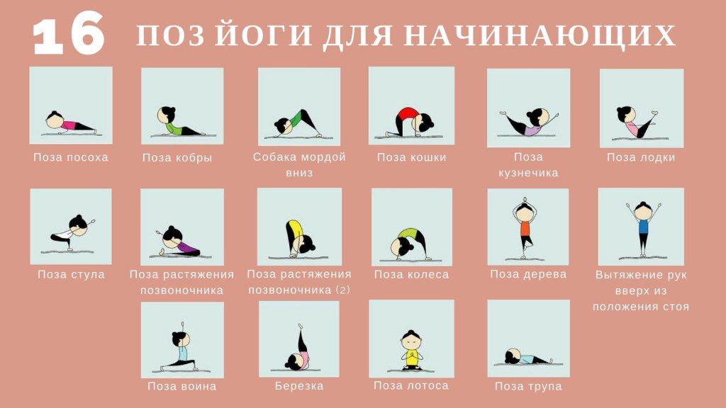 Аштанга йога для начинающих: с чего начать и как выполнять упражнения правильно (95 фото)
