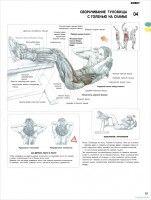 Как накачать идеальные кубики пресса: полная программа тренировки мышц живота