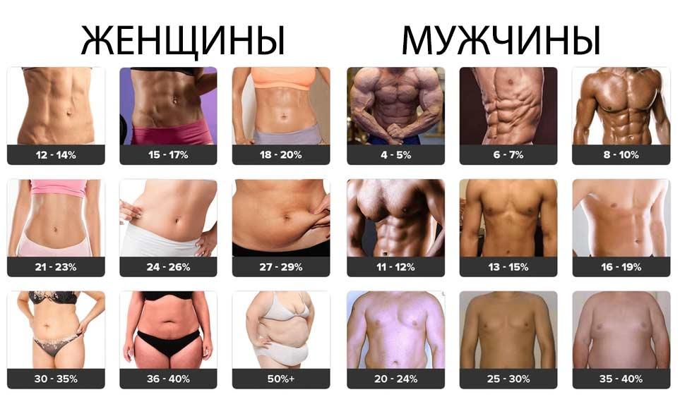 Процент жира в организме: нормы для мужчин и женщин