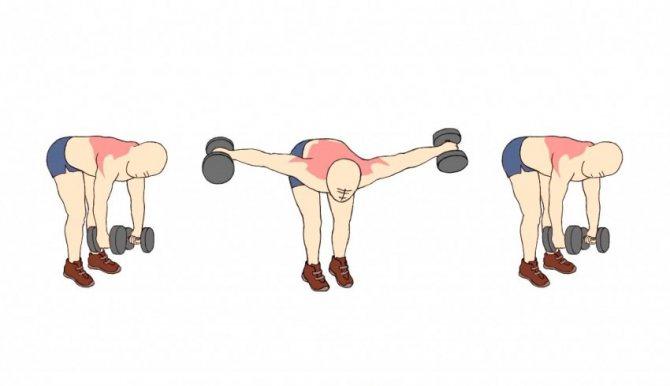Упражнение для голени «ослик»