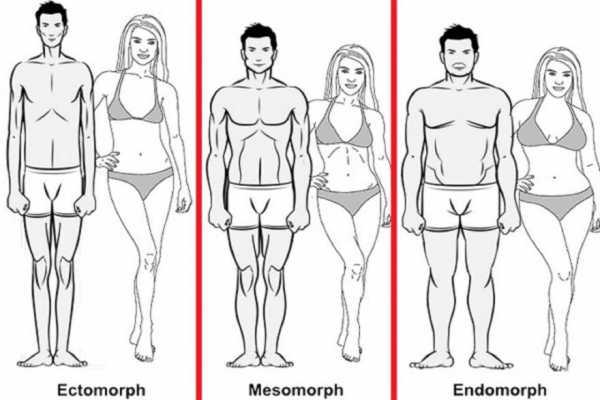 Калькулятор типа телосложения (эктоморф, мезоморф или эндоморф)