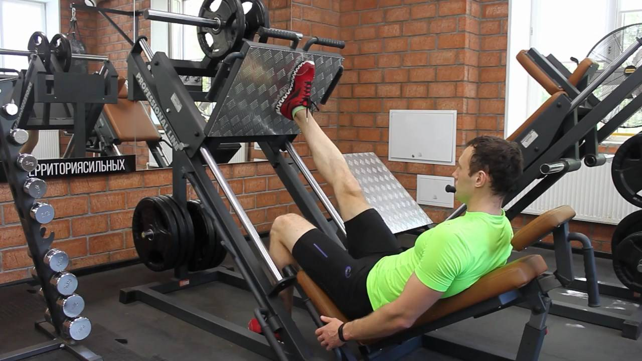 Упражнение жим ногами: техника. правильная постановка ног. видео