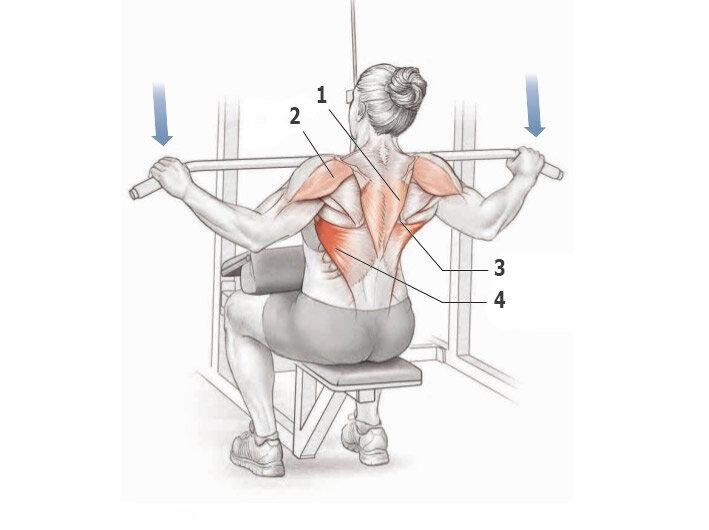 Тяга верхнего блока: формируем широкую спину