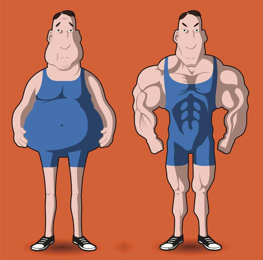 Кому проще набрать мышечную массу – толстому или худому?