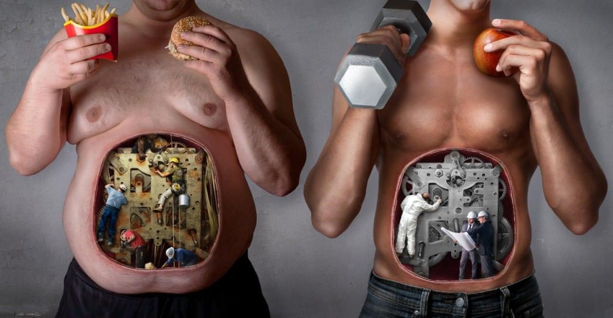 Основы здорового образа жизни: 10 самых распространённых мифов | блог medical note о здоровье и цифровой медицине