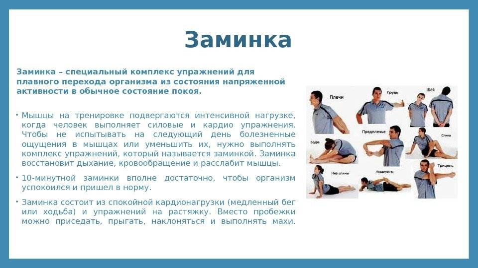 Упражнения для разминки и заминки с удобным приложением