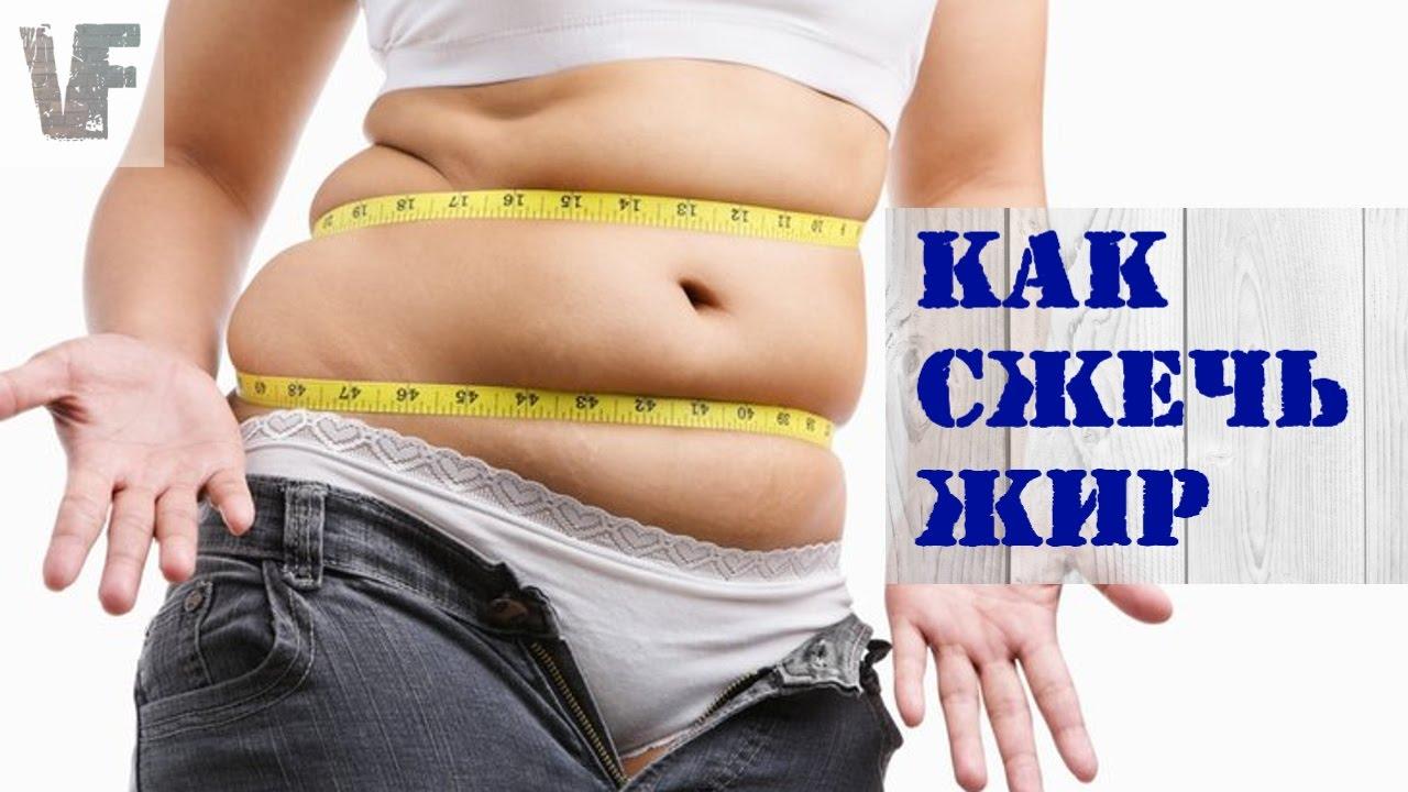 Спорт палим жир к лету #1: «жирные» мифы