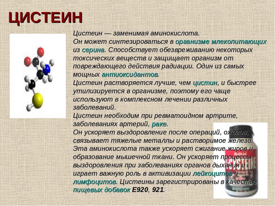 Как принимать аминокислоты для спортсменов и какие из них лучше?