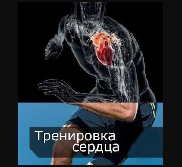 Как тренировать сердце | развитие выносливости