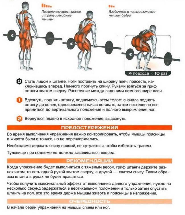 О важности становой тяги в бодибилдинге - 4minbody
