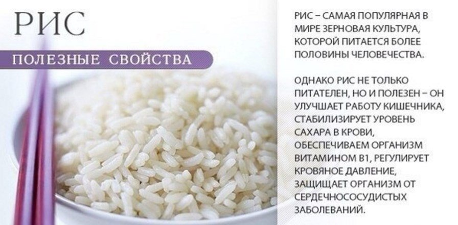 Рис: польза и вред для здоровья мужчин, женщин, беременных, детей