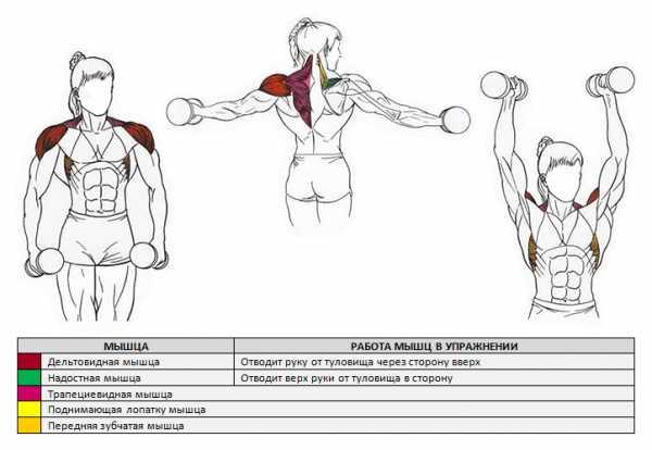 Упражнения для плеч