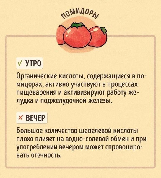 Как правильно есть фрукты, чтобы похудеть? - шаг к здоровью