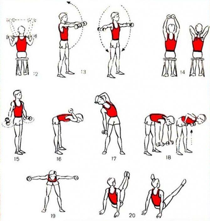 Сила хвата – лучшие упражнения для тренировки и развития (88 фото + видео)