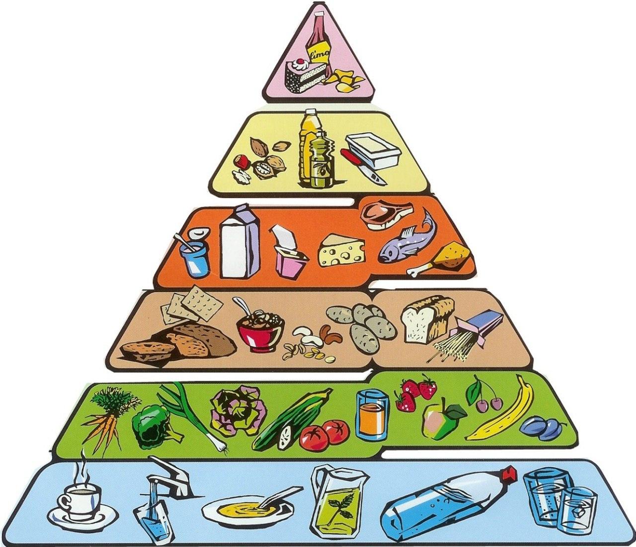 Пирамида питания – цели и рекомендации ученых по здоровому питанию     gastrogid.ru
