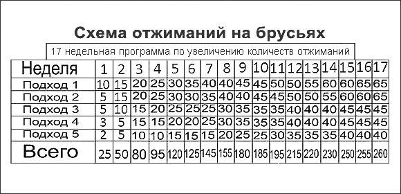 Тренировка: программа 100 отжиманий
