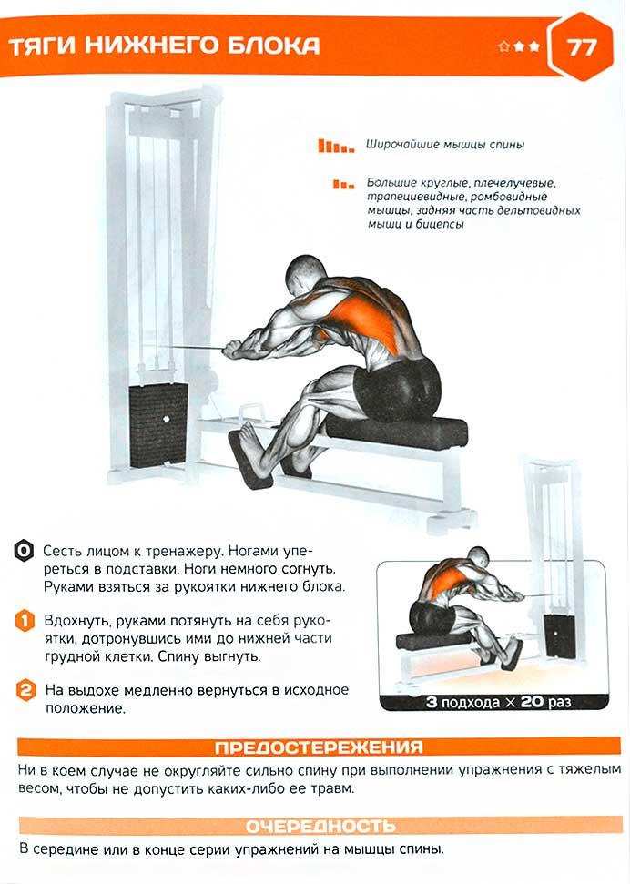 Горизонтальная тяга в блочном тренажере: фото и видео упражнения