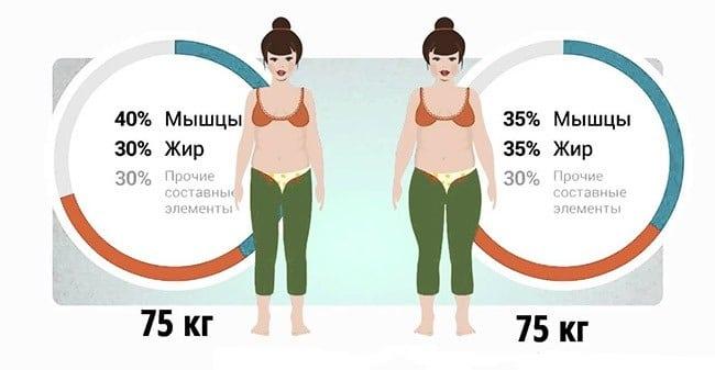 3 способа, как измерить процент подкожного жира в организме