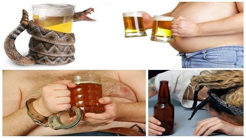 Алкоголь в бодибилдинге . польза или вред - реальная качалка