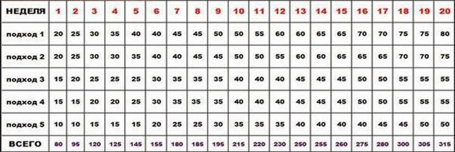 Программа 100 отжиманий за 6 или 7 недель: как научиться отжиматься 100 раз