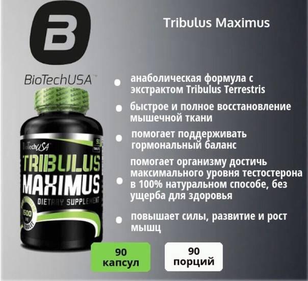 Tribulus terrestris 625 мг 100 капс (maxler) купить в москве по низкой цене – магазин спортивного питания pitprofi