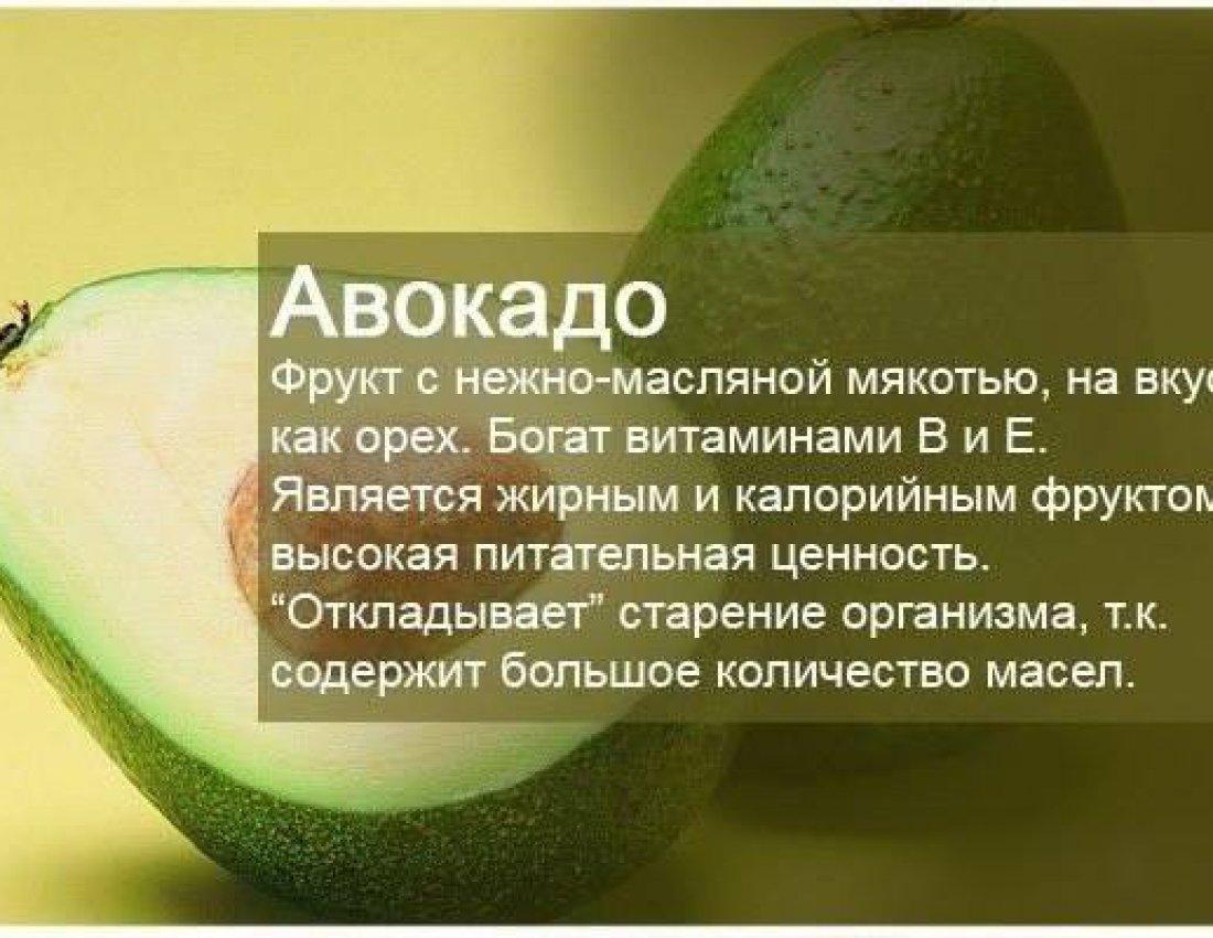 Авокадо - польза и вред для организма человека