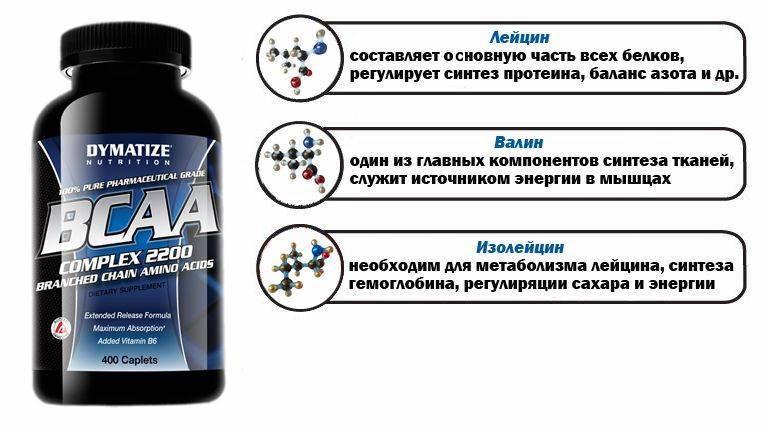 Что такое протеин и для чего он нужен?
