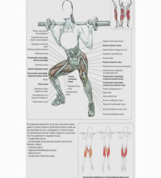 Как накачать ноги девушке: топ упражнений для тренировки мышц ног в домашних условиях