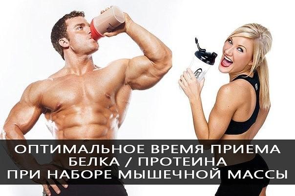 Как подсушиться, не теряя мышечной массы