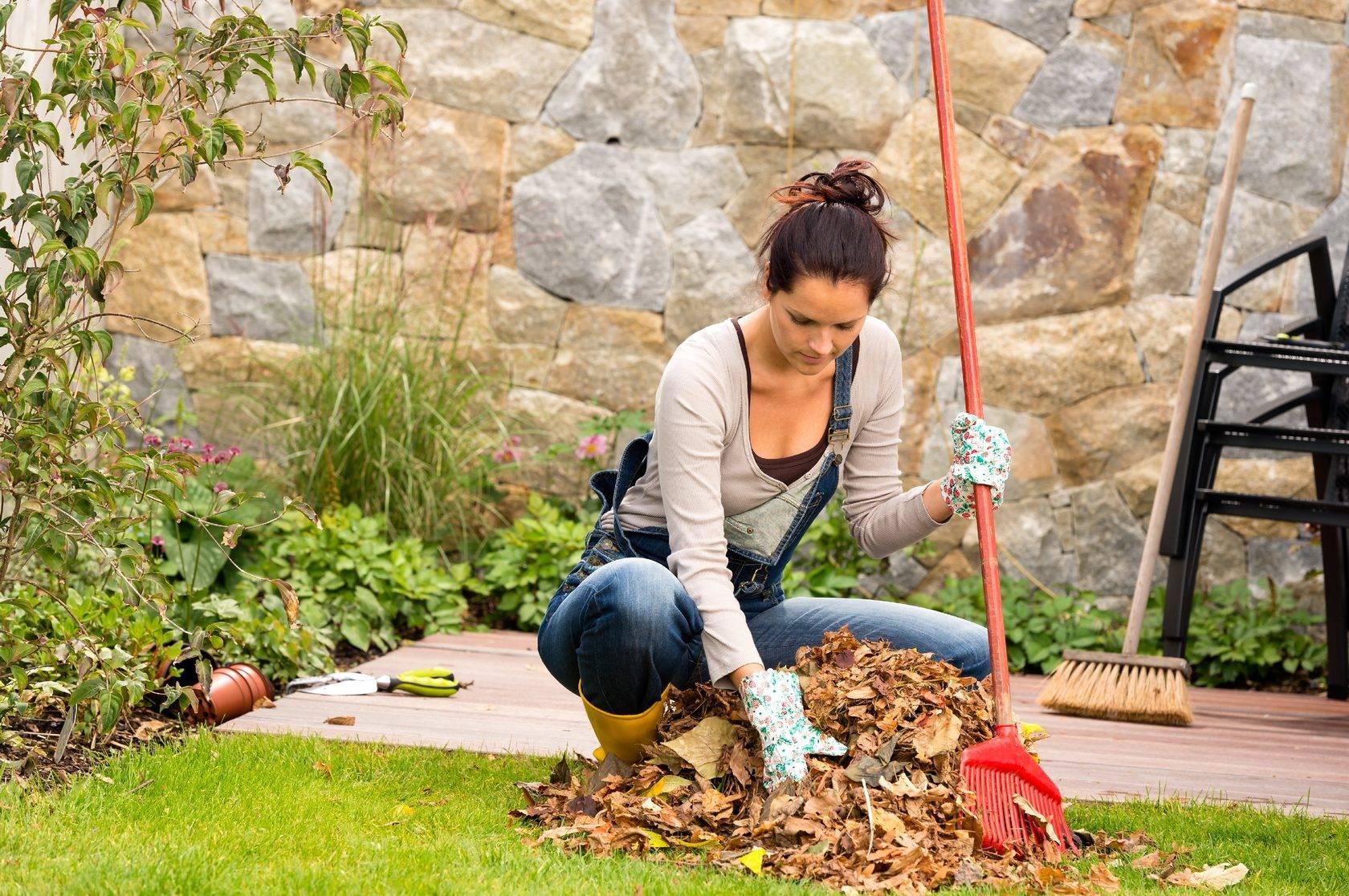 Почему болит спина на даче? как правильно работать в огороде, чтобы не навредить позвоночнику