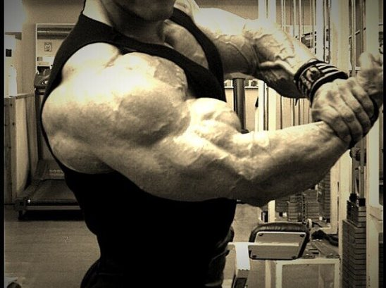 5 стратегий, позволяющих увеличить объем мышц – все боевые искусства и единоборства