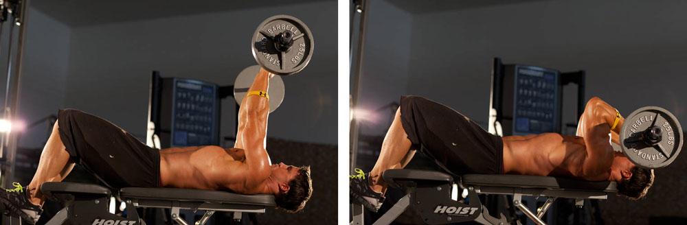 Упражнения на трицепс в тренажерном зале: лучшие базовые и изолирующие комплексы