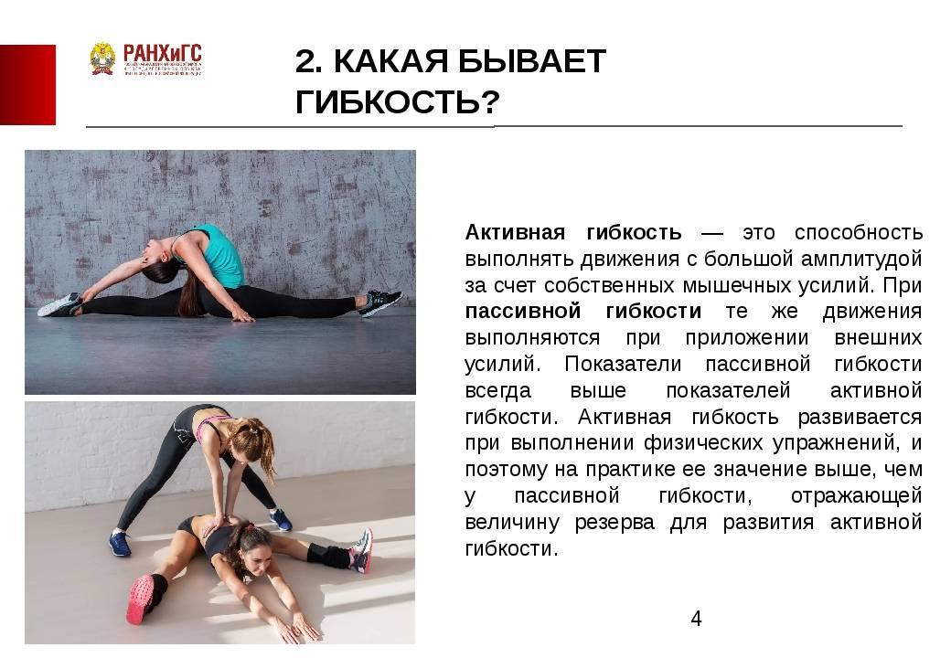 Стретчинг: комплекс упражнений в домашних условиях