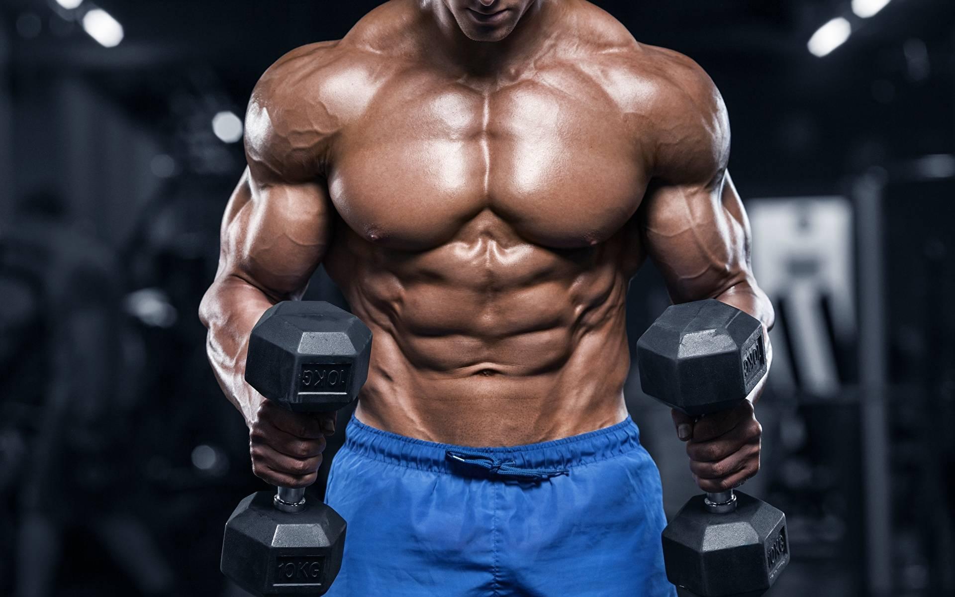 Бодибилдинг тренировки: рост мышц, упражнения, питание и программы.