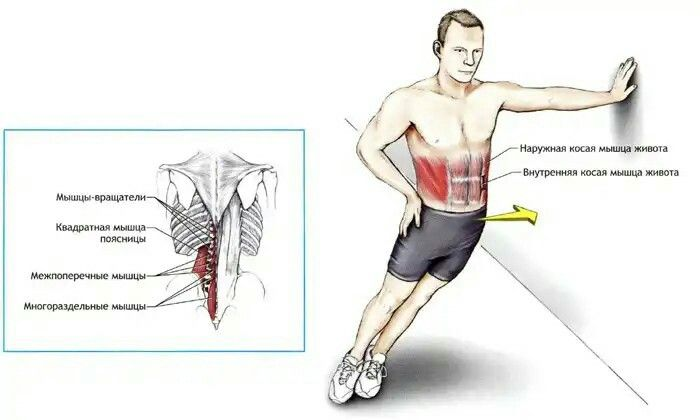 Растяжка всего тела: программа тренировок с упражнениями на гибкость и видеоуроки   rulebody.ru — правила тела
