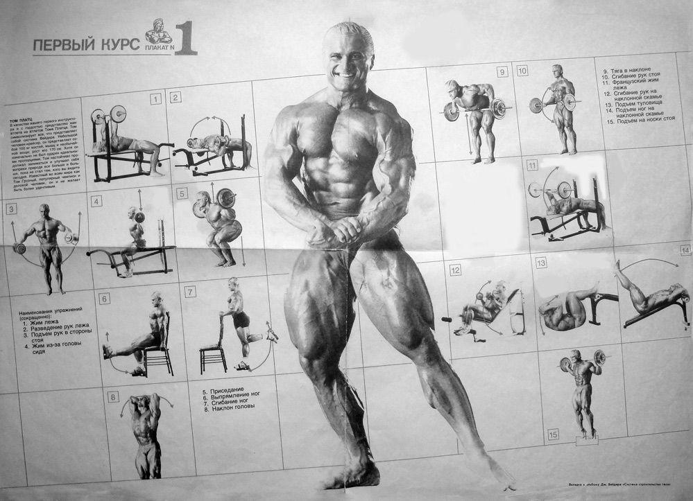 Джо вейдер - система строительства тела (глава 10 упражнения и тренировочные рекомендации)