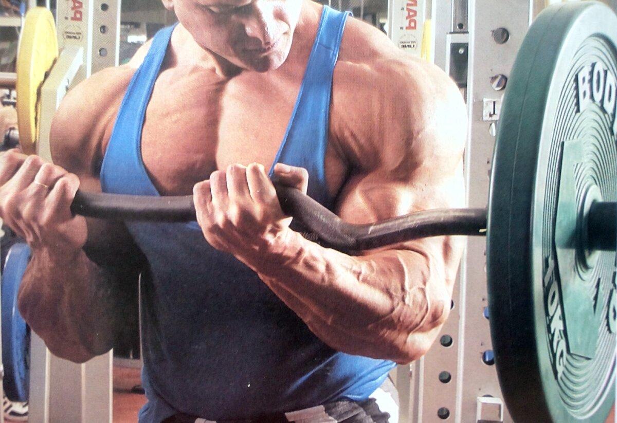Что происходит с мышцами во время тренировки. зачем шокировать мышцы во время тренировки | фитнес для похудения