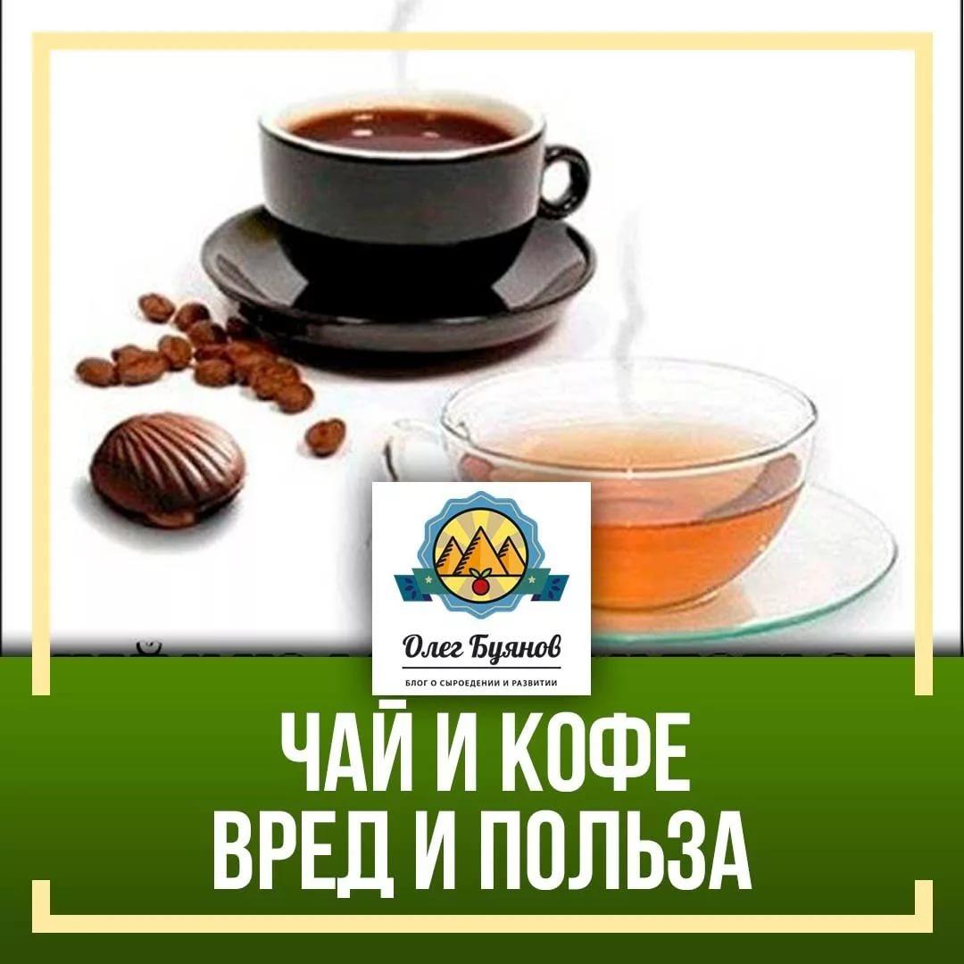 Что полезнее - чай или кофе: полезные свойства, какой напиток лучше для здоровья