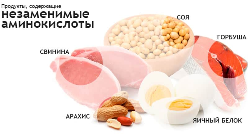Что такое незаменимые аминокислоты? в каких продуктах они содержатся?