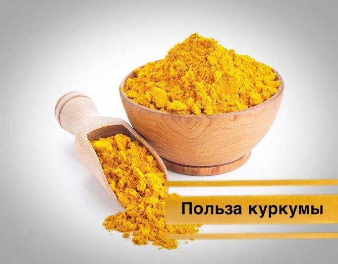 Куркума: польза и вред для здоровья и как её пить