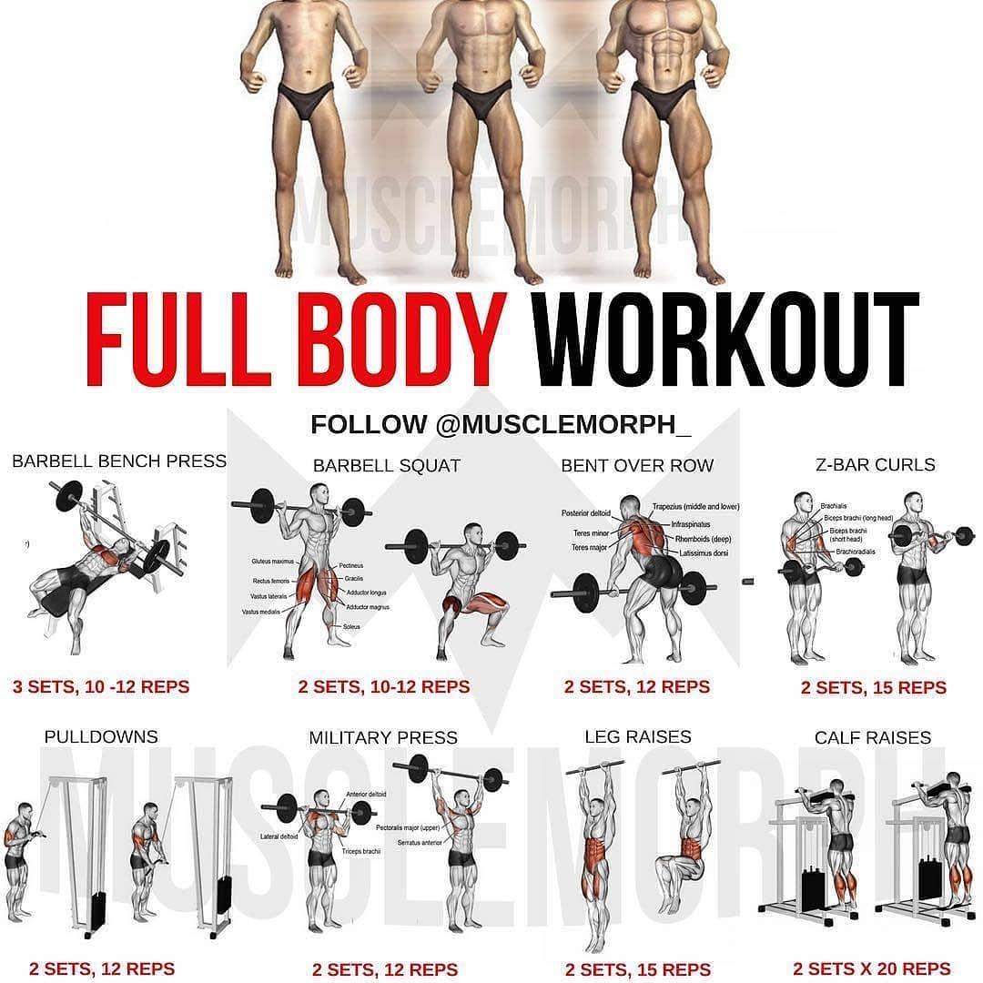 Фулбади тренировки - программа для мужчин, женщин
