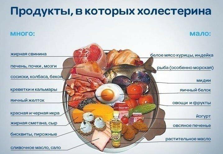 Продукты повышающие уровень холестерина - топ - 8 продуктов