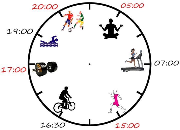 Можно ли тренироваться утром: научный подход к распределению нагрузок