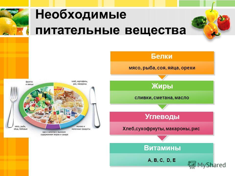 Белки, жиры, углеводы в продуктах - инструкция, применение, отзывы