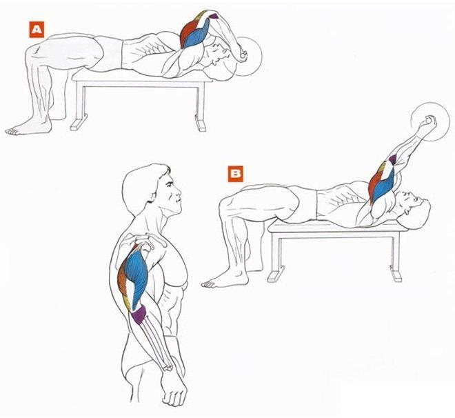 Как накачать ноги девушке в домашних условиях, 13 упражнений