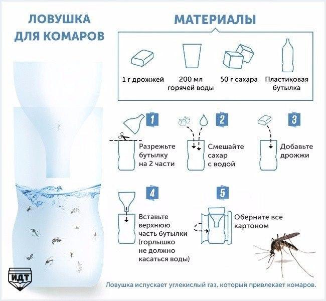 Ученые выяснили, как комары выбирают себе жертву