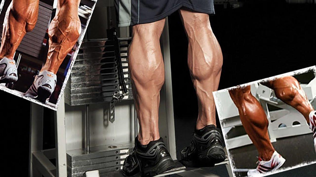 Как накачать икры мужчине   6 правил тренировки мышц голени
