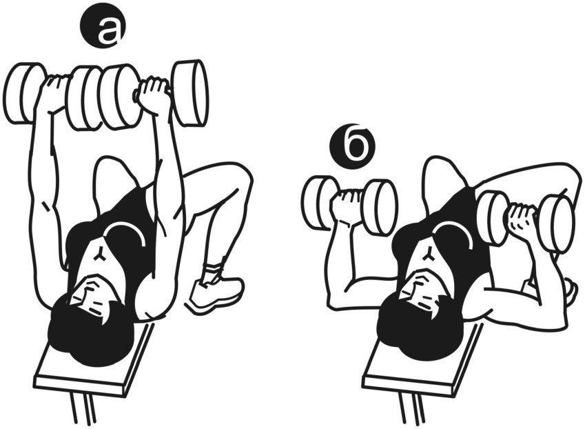 Все, что нужно знать об упражнении жим гантелей лежа
