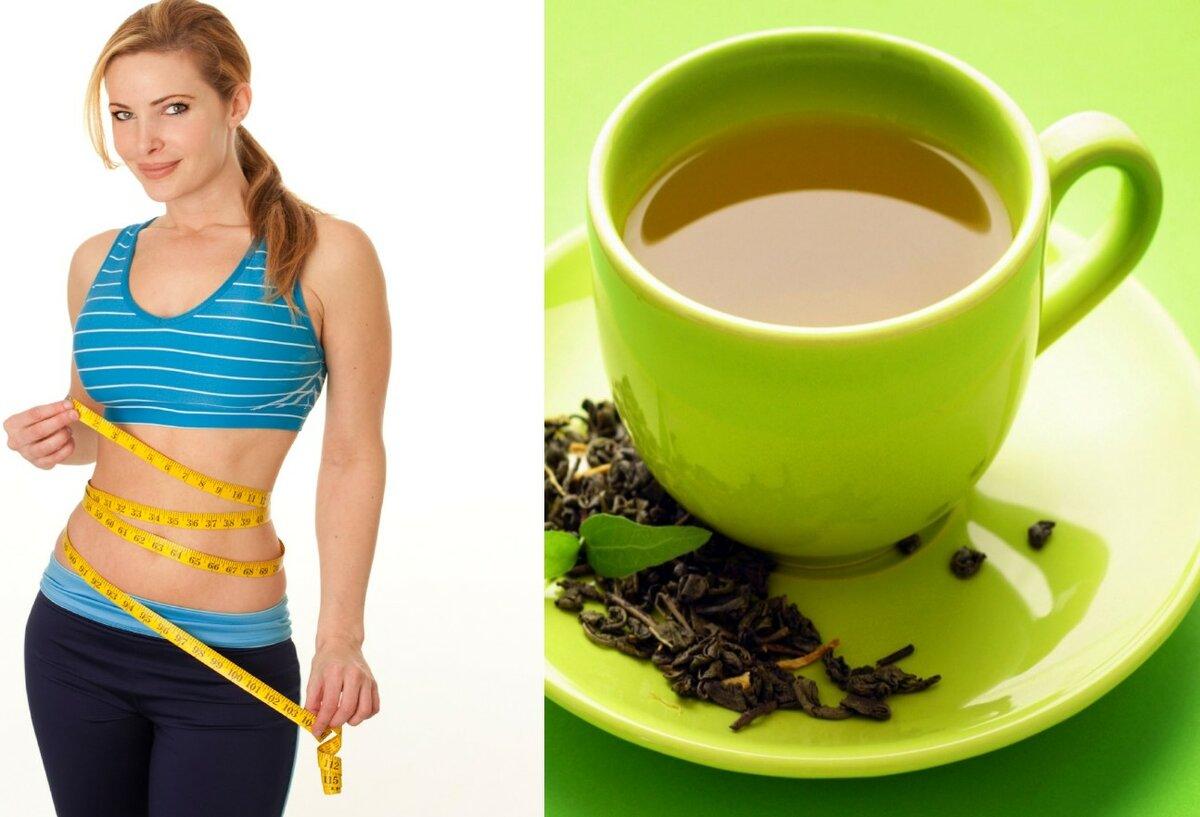 Польза зеленого чая после 50 лет для организма человека